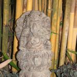 Padma Ganesh