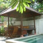the nice wooden cabin next to the pool