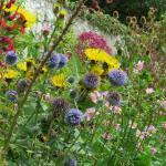 Trewidden walled garden
