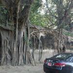 เป็น สถาปัตยกรรมที่ ธรรมชาติ รังสรรค์ ได้ งดงาม