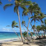 Foto de Namena Island Dive Resort