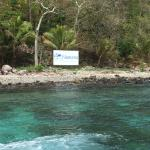 Namena Island Dive Resort Foto