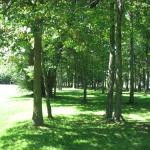 Club de Golf Rivière-Rouge