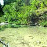 Photo of Agriturismo Tholos