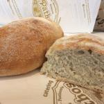 Pane azzimo o senza lievito