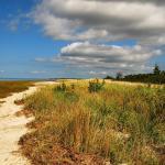 Photo de Long Pasture Wildlife Sanctuary