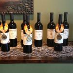 Mazzocco Award Winning Wines