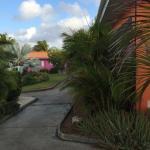 Photo of De Plantage Bungalowpark