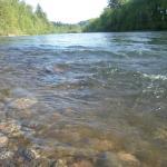 Clackamas River Foto