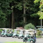 Golf Course, Lake Padden Golf Course, Bellingham, Wa