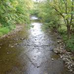 Small stream across the street from Keyser Inn