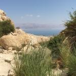 Genesis Land