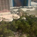 View of the flamingo habitat from the 24th floor
