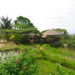 Photo of Rinjani Mountain Garden