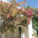 Photo de Quinta da Balaia