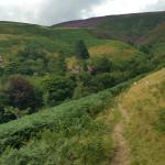 Path to YHA Edale