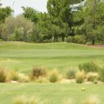 Foto de The Raven Golf Club at South Mountain