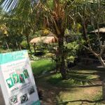 Photo de Yeh Pulu cafe and restaurant