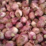 Κρεμύδια Βατικιώτικα.