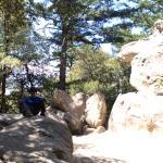 Castle Rock State Park Foto