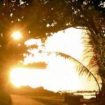 Lever de soleil vu de Te Ora Hau