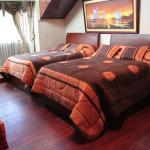 Habitación doble deluxe dos camas
