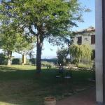 Spazzavento's front lawn