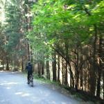 Pra Rodont discesa in bici