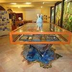Museo comunitario de Cupilco Comalcalco