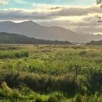 Killarney National Park (148897476)