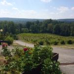 Six Mile Creek Winery