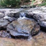 Camp Creek State Park Foto