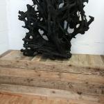 7,000 year old bog oak root
