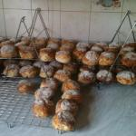 Freshly made Scones