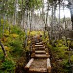 Lower Gun Hill Trail