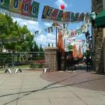 Cinco de Mayo Central!