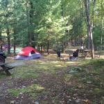 Foto di Campers Paradise