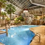 Indoor Tropical Atrium and Pool