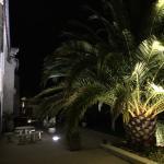Parc la nuit