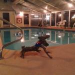 Foto de Clarion Inn Surfrider Resort
