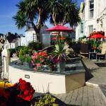 The Elm Tree Hotel Foto