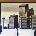 Foto de Super 8 Calgary Shawnessy Area