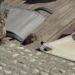 La Grotta Beach Foto