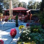 Carrickdale Hotel gardens