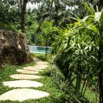 Zenubud : serenity and tranquility