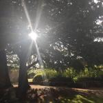 Landscape - Ruthin Castle Hotel Photo