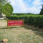 Domaine des Ouches