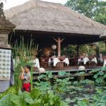 Set in the beautiful Han Snel gardens