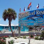 Welcome to the Shark Reef Resort