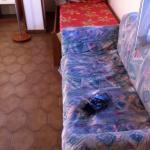 Photo de Residence Hotel Felix